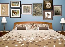 Shop For Bedrooms Steve Justrich