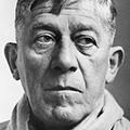 Oskar Kokoschka image