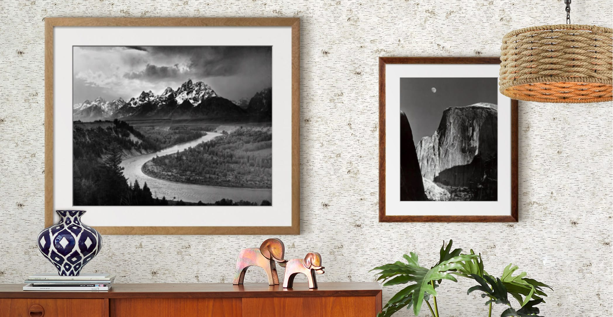 See the world in black and white with the most beloved nature           photographer.