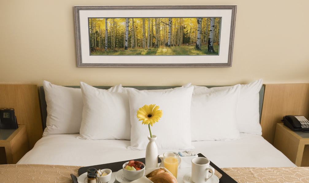 Framed landscape photo print in a hotel room. Hotel décor for guest rooms and lobbies.