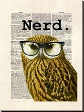 Matt Dinniman, Owl Nerd