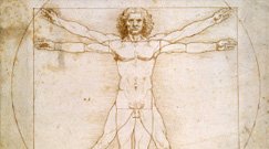 Leonardo Da Vinci Prints and Posters