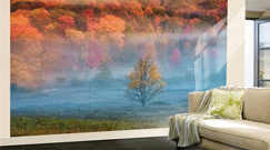 Wall Murals Posters and Prints